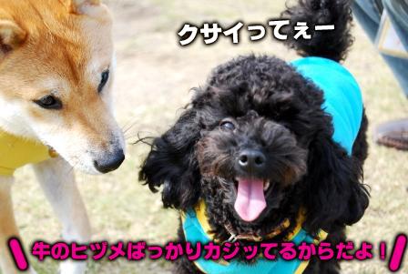 フクちゃん&towa