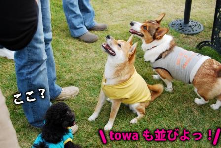 フクちゃん&仁君&towa