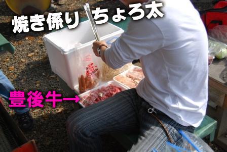 2008_111611160072.jpg