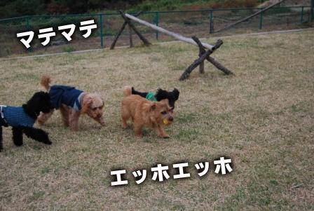 2008_111611160313.jpg