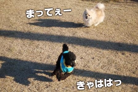 2008_113011300139.jpg