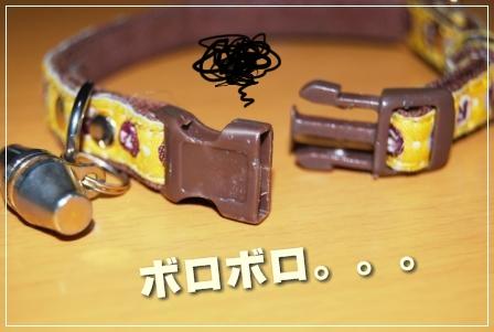 2009_011501150006.jpg