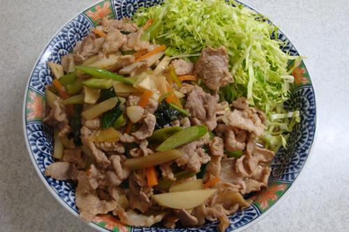 090222-010豚肉と野菜の炒め(縮小)