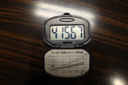 090513-08歩数計2(縮小)