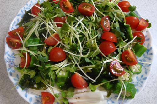090524-030長芋のサラダ(縮小)