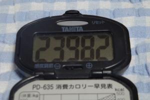 090530-060万歩計(縮小)