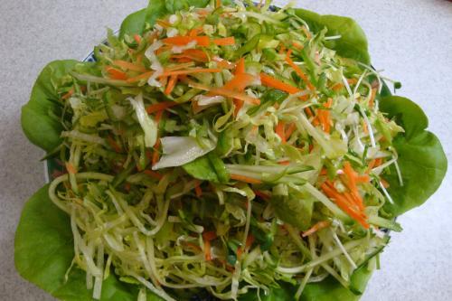 090606-020千切り野菜サラダ(縮小)