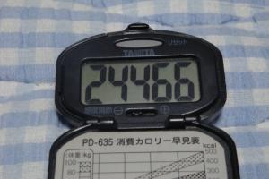 090606-040万歩計(縮小)