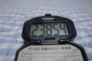 090613-050万歩計(縮小)