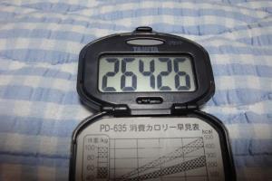 090620-050万歩計(縮小)