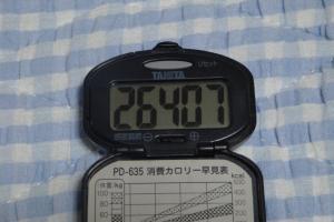 090627-060万歩計(縮小)