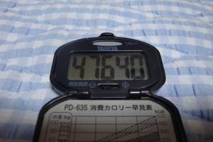 090628-050万歩計(縮小)