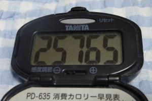 090704-060万歩計(縮小)