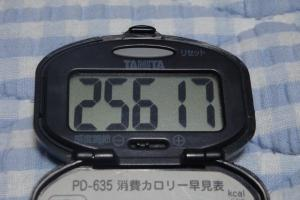 090711-060万歩計(縮小)
