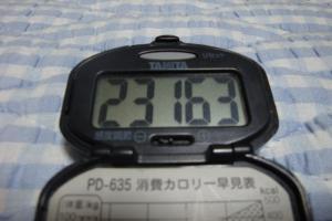 090717-050万歩計(縮小)