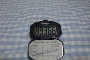 090722-万歩計(縮小)