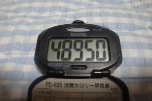 090802-060万歩計(縮小)