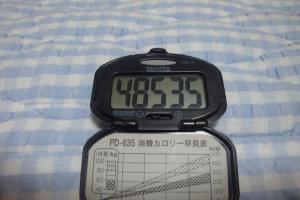 090809-060万歩計(縮小)