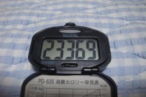 090829-060万歩計(縮小)