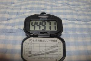 090830-050万歩計(縮小)