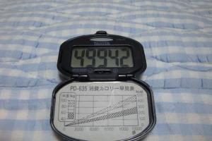 090920-040万歩計(縮小)
