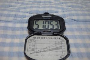 091004-060万歩計(縮小)