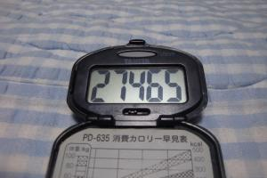091010-070万歩計(縮小)