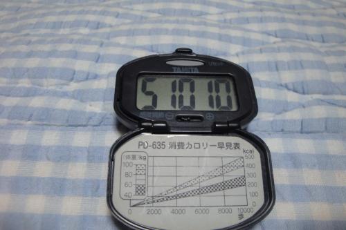 091011-050万歩計(万歩計)