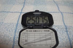 091017-060万歩計(縮小)