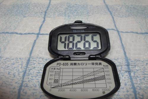 091018-060万歩計(縮小)