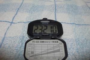 091103-050万歩計(縮小)