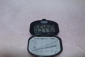 091110-008万歩計(縮小)