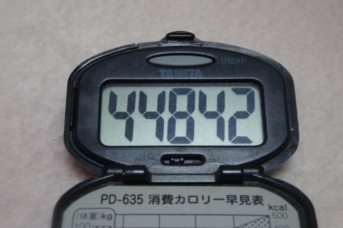 091115-060万歩計(縮小)