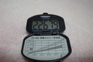 091121-050万歩計(縮小)