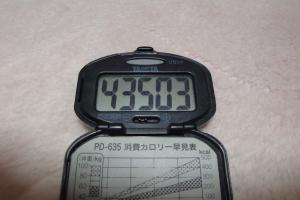 091122-050万歩計(縮小)