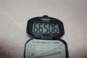 091123-050万歩計(縮小)
