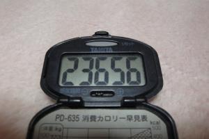 091128-030万歩計(縮小)
