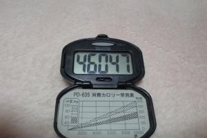 091129-050万歩計(縮小)