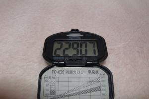 091205-050万歩計(縮小)