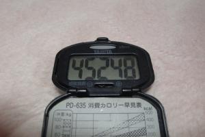 091206-040万歩計(縮小)