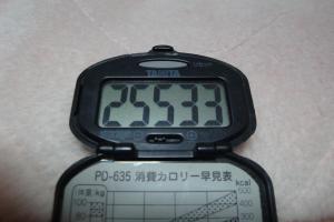 091219-060万歩計(縮小)