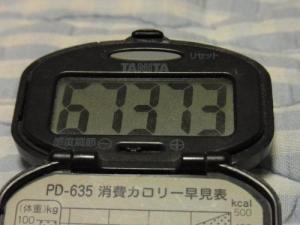 110925-050万歩計(縮小)