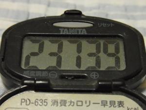 111001-050万歩計(縮小)