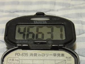 111002-060万歩計(縮小)