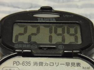 111008-060万歩計(S)