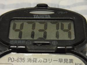 111009-060万歩計(S)