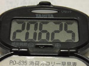 111029-040万歩計(S)