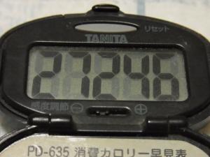111103-050万歩計(S)