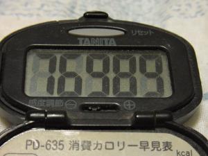111106-130万歩計(S)