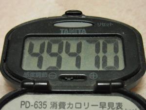 111126-050万歩計(S)